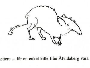 Vahettere … får en enkel kille från Åtvidaberg vara med?